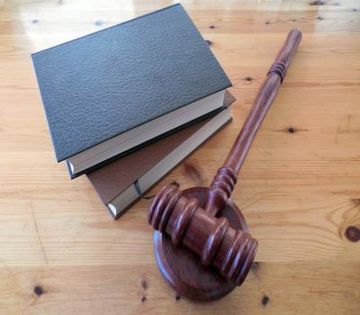 Direito Constitucional: Cidadania E Mandado De Segurança