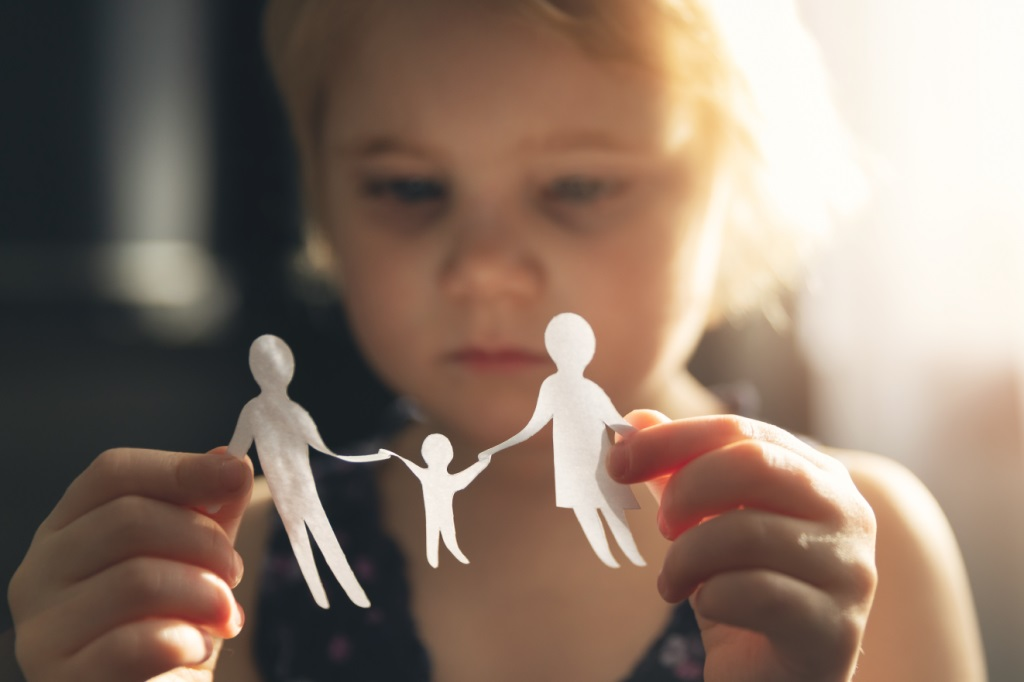 Direito De Família - Alienação Parental, Guarda Compartilhada E Alimentos Gravídicos